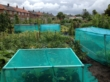 Garden Netting - 50m x 2m Green