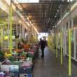 Tube Protector Foam - Yellow (35 Pack), 2m Long