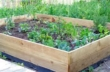 Raised Garden Beds Untreated Timber - 2.4m (8ft) x 2.4m (8ft)