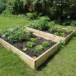Raised Garden Beds Tanalised Timber - 2.4m (8ft) x 1.2m (4ft)