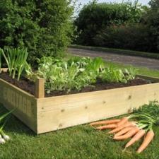 790-untreated-garden-bed.jpg