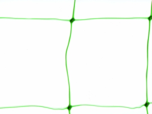 Pea & Bean Netting 1.7m x 4m