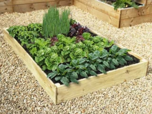 Slim Raised Garden Beds Tanalised - 2.4m (8ft) x 2.4m (8ft)